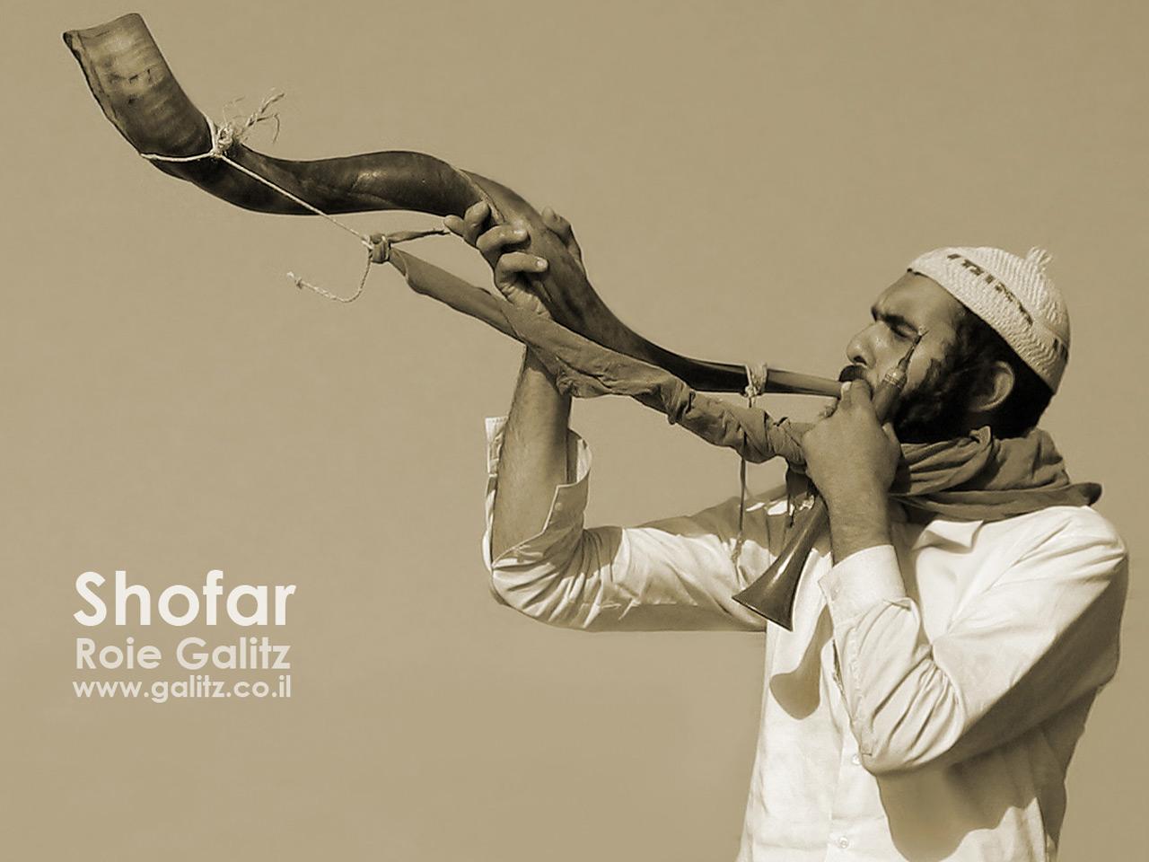 ROSH AHSHANÀ - CAPODANNO EBRAICO 9-10 SETTEMBRE 2010 dans EBRAISMO: LE FESTIVITÀ shofar1280